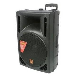 Mr. Dj PAS3000AMP Professional Dual 15 Inch Speaker 3000