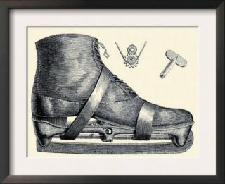 Mechanics of the Ice Skate Art