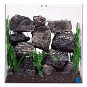 Reptile & Hamster Aquariums: Large, Small, Desktop & More