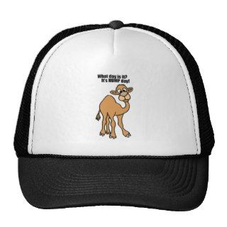 Funny Hump Day Camel Art Trucker Hats
