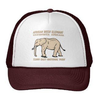 African Bush Elephant Hat