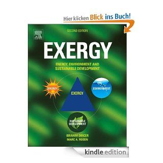 EXERGY: Energy, Environment and Sustainable Development eBook: Ibrahim