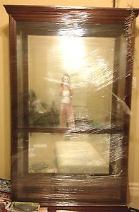 Large All Glass Display Curio Cabinet with Lights Cherry Wood