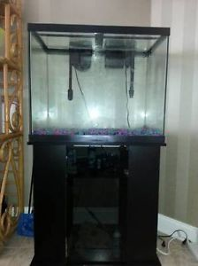 Aqueon column aquarium stand stands fish on popscreen for Column fish tank