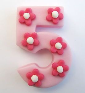 Large Number 5 Light Pink with Blossoms Edible Sugar Cake Decoration 6 5cm