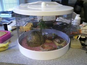 Hermit Crab Cage Habitat