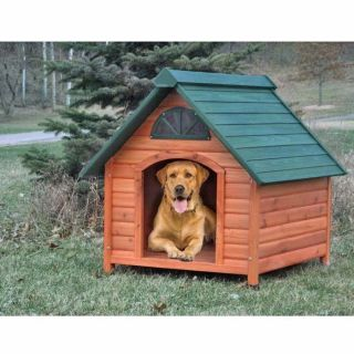 Insulated Dog House