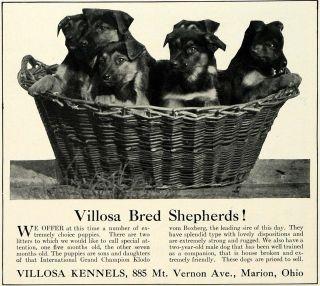 1930 Ad Villosa Kennels German Shepherd Puppies Dog Breeders Pets Marion Ohio