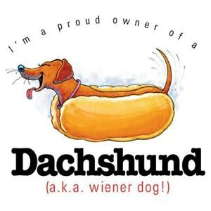 Funny Dog Tshirt Dachshund A K A Wiener Dog Cute Puppy Pet Paw Canine