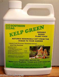 Kelp Green Organic Based Plant Food Seaweed Fish New Southern AG Quart 32oz