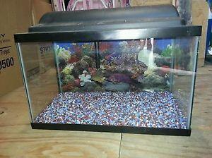 55 gallon fish tank top fin 55 gallon starter kit for 10 gallon fish tank lid