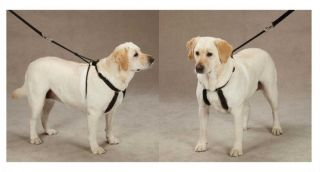 Heavy Anti Pull Harnesses for Dogs Train Your Dog to Walk Without Pulling