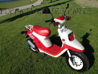 Yamaha Zuma Scooter