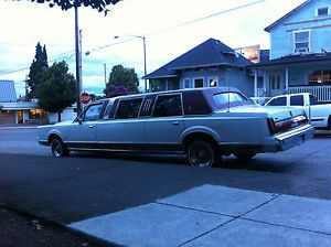 Lincoln Town Car Door