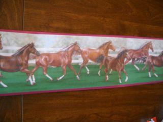 1 Roll Horses Wallpaper Border Pink Trim Wall Border Racing Horse Stallion