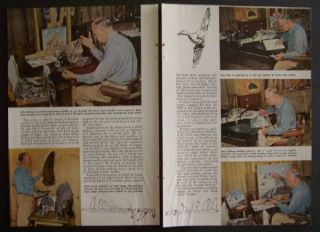 Richard E Bishop Duck Calendars Artist 1949 Brown Bigelow Pictorial
