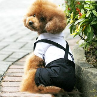 New Dog Pet Dress Suspender Puppy Costume Clothes Apparel s M L