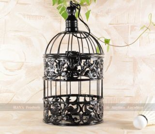 Bird cage small pet cage parakeet finch canary orange cage for Petite cage a oiseaux decorative