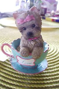 Sweet Yorkie Sitting in A Tea Cup from Brimming with Personali Tea C0LLECTION