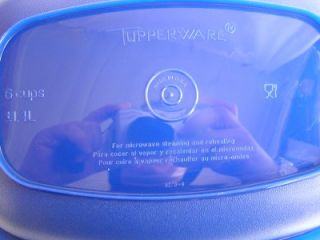 Tupperware Microwave Steamer Cooker 6 Cup Blue and White