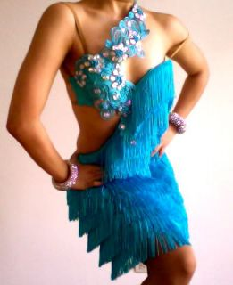 Custom Cha Cha Fringe Crystal Salsa Latin Dance Dress