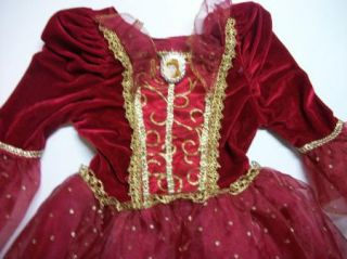 Belle Beauty Beast Costume Christmas Princess Dress 4 6