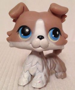 Littlest Pet Shop LPS Collie Dog 67 Gray Grey Taupe White Blue Eyes VGUC