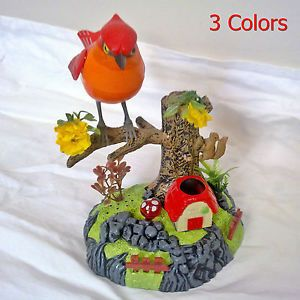 Popular Pet Bird B O Battery Operated Music Kids Children Toy
