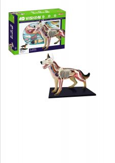 Dog Anatomy Model Puzzle 4D Vision Kit 26115 Tedco Science Toys