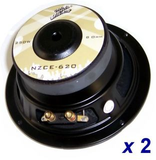 "Subwoofer Speakers Pair 250 Watt 6"" DJ Car Home Audio"