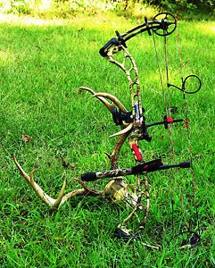 PSE Youth Compound Bow