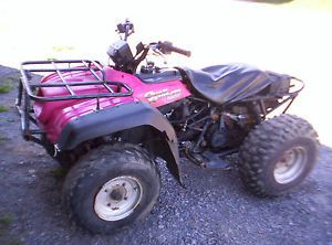 Suzuki Quadrunner 250 Project or Parts