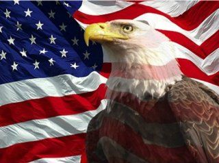 Eagle with American Flag 1 Counted Cross Stitch Pattern Booklet: Arts, Crafts & Sewing