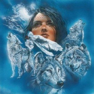 INDIAN WITH WOLVES 162 CROSS STITCH CHART: Home & Kitchen