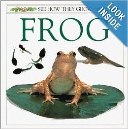 See How They Grow: Frog: Angela Royston, Mary Ling: 9780789476562: Books