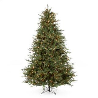 Itasca Frasier Fir Pre Lit Christmas Tree   Christmas Trees