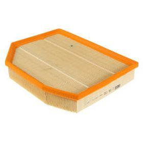 Mann Filter Dry OE Replacement Air Filter