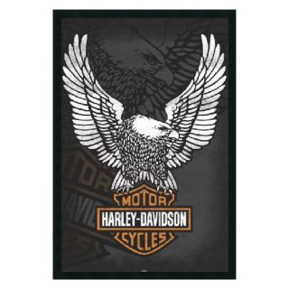 Harley Davidson   Eagle Framed Wall Art   25.41W x 37.41H in.   Framed Wall Art