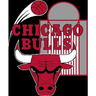 Northwest Chicago Bulls Raschel 50 x 60 Plush Blanket